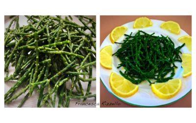 Come preparare la Salicornia